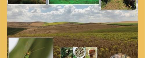 La importancia de las cadenas tróficas en los sistemas agrarios