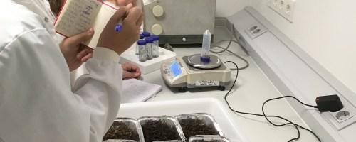 Resultados de la humedad de los biorreactores en el Tiempo T1