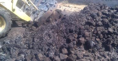 Artículos científicos sobre compost