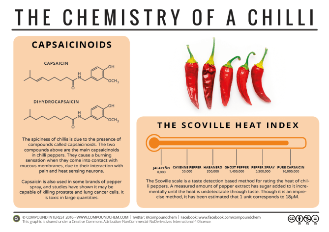 Chilli Chemistry