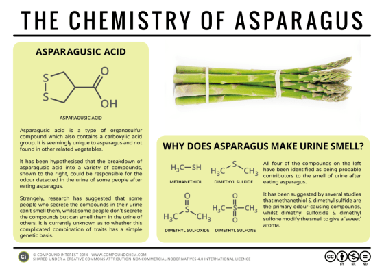 Food Chemistry - The Chemistry of Asparagus