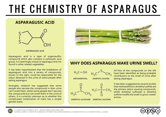 Food Chemistry - The Chemistry of Asparagus