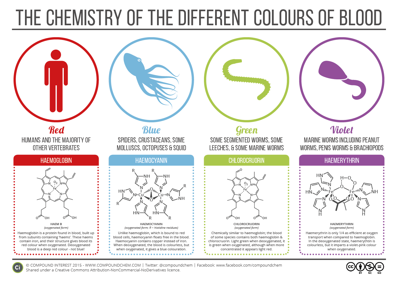 Blood colours in animals