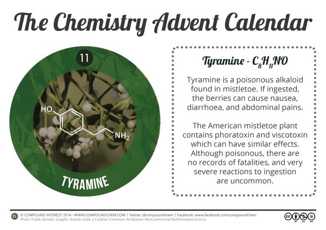 11 - Tyramine & Mistletoe2