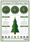 Aroma of Christmas Trees