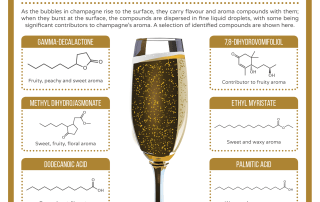 Champagne Chemistry