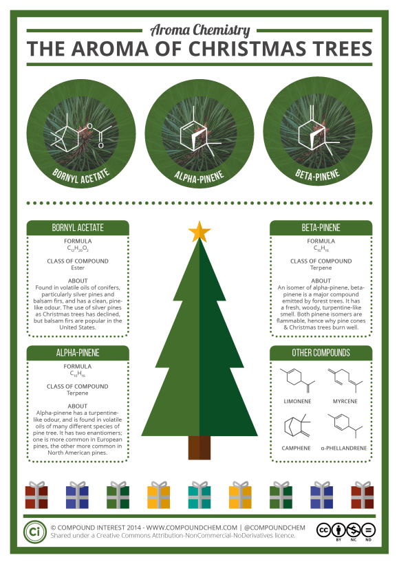 The Aroma of Christmas Trees