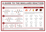 Food Chemistry - The Maillard Reaction