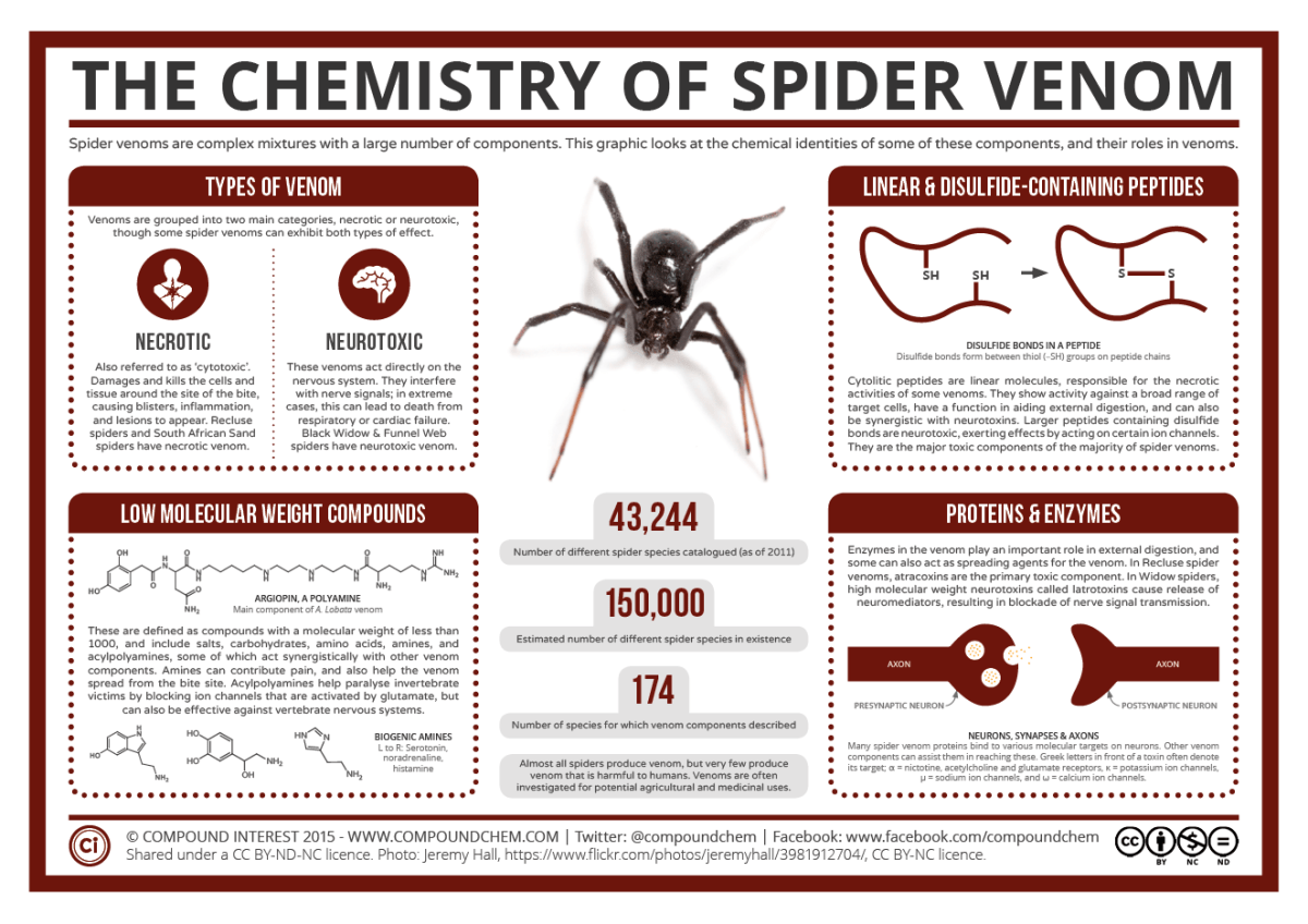The Chemistry of Spider Venom