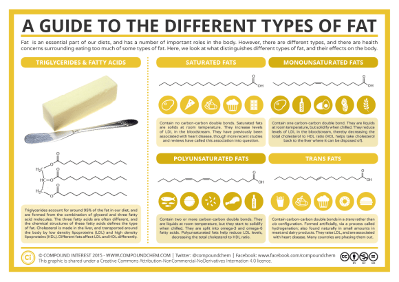 A Guide to Different Types of Fat