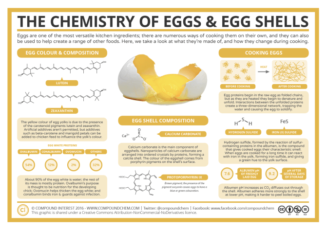The Chemistry of Eggs & Eggshells 2019