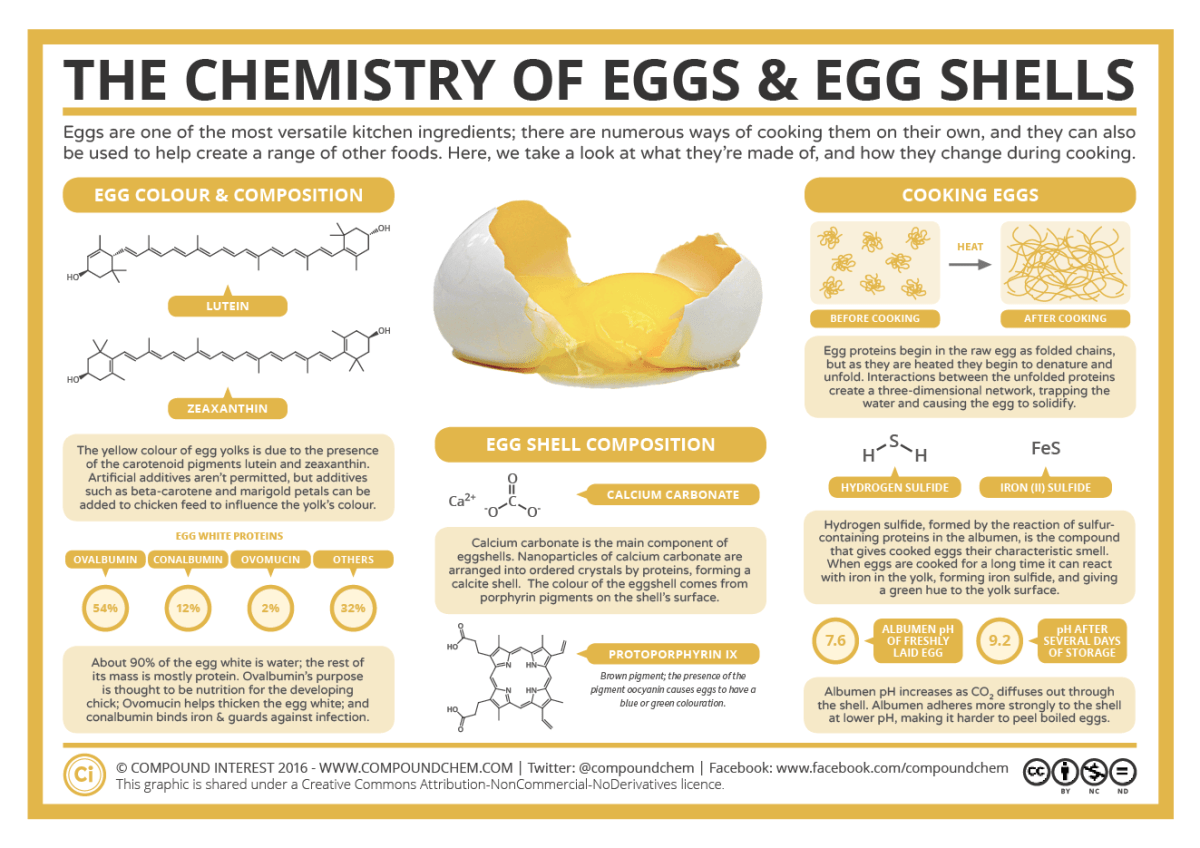 The Chemistry of Eggs & Eggshells