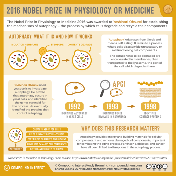 2016 Nobel Prize in Medicine or Physiology