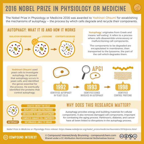 2016 Nobel Prize in Medicine or Physiology