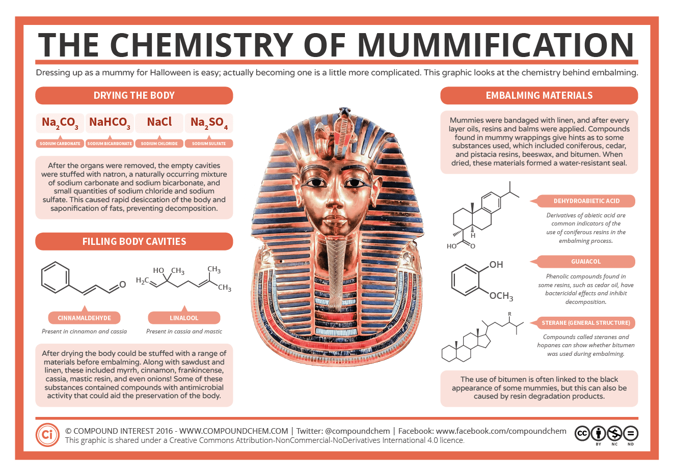 The Chemistry Of Mummification
