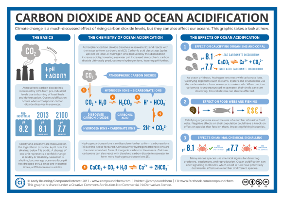 Carbon Dioxide and Ocean Acidification