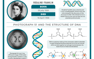 07-25 – Rosalind Franklin's Birthday 2018