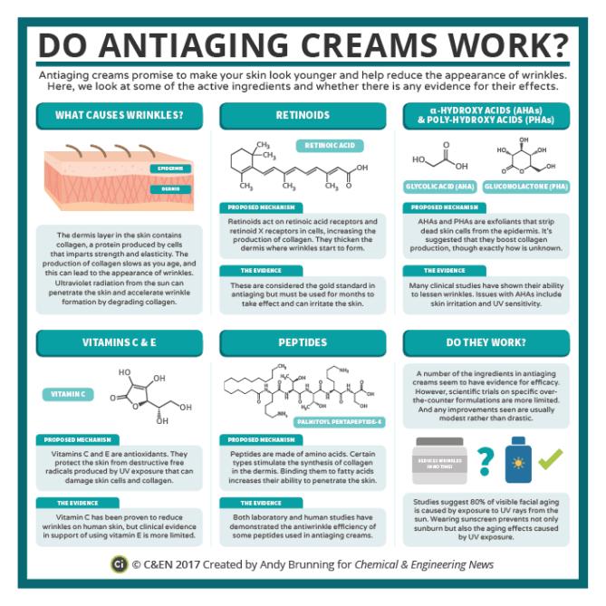 C&EN - Anti-Wrinkle Cream Chemistry
