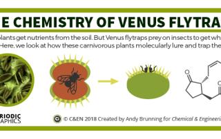 C&EN – Carnivorous plant chemistry preview
