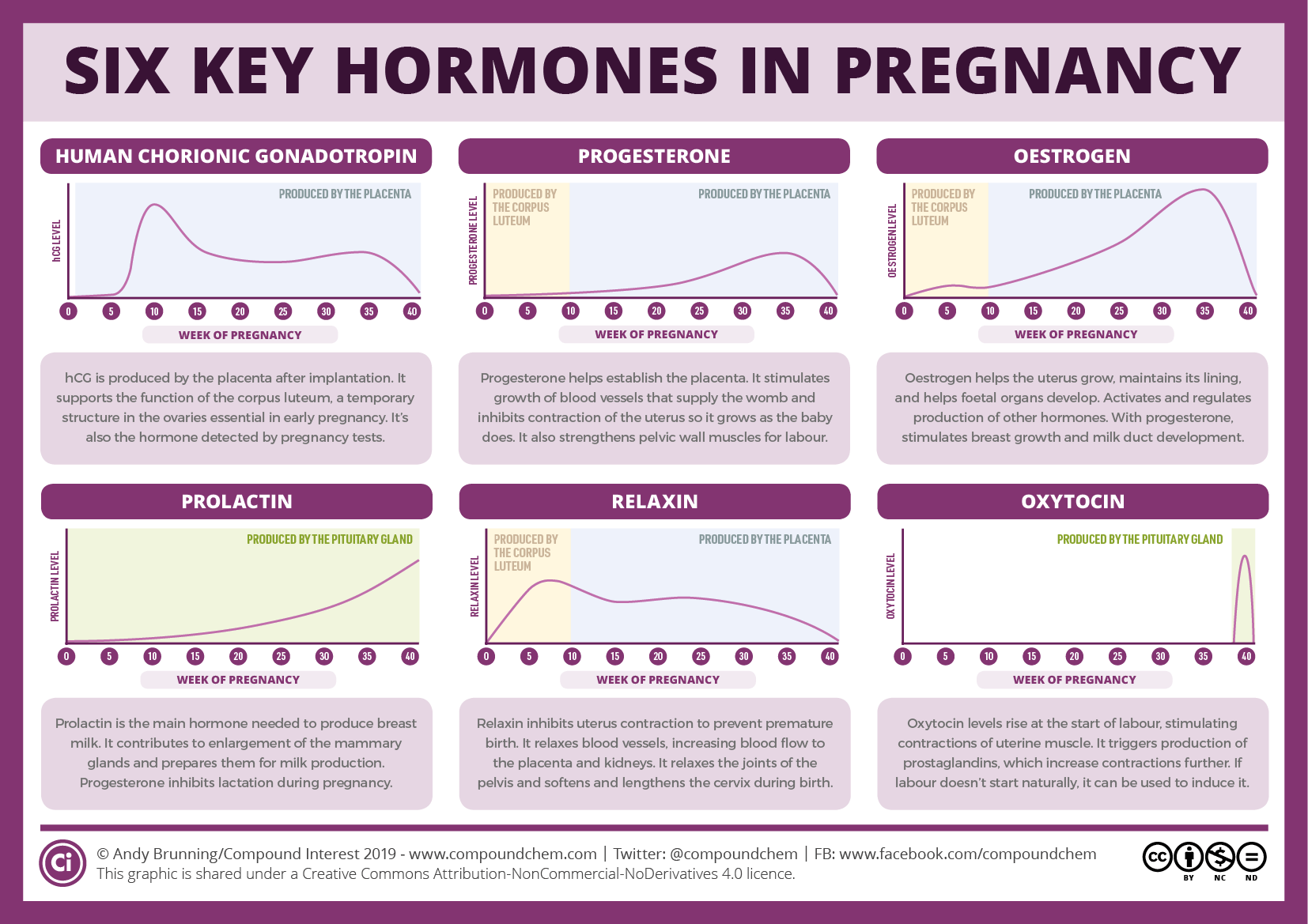 Six Key Pregnancy Hormones And Their Roles Compound Interest