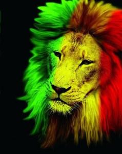 bandera rastafari significado