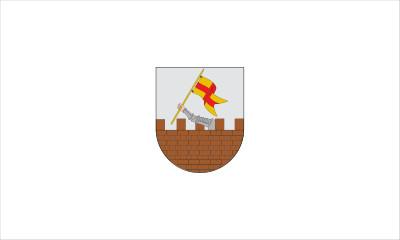 Bandera_de_Amurrio país vasco