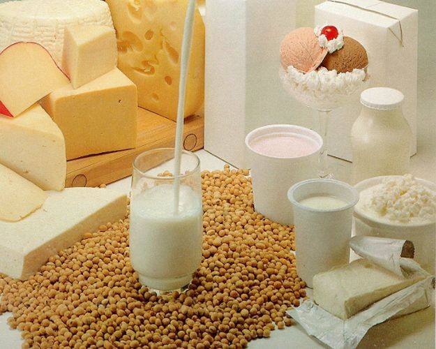 Elementos nutritivos de los lácteos