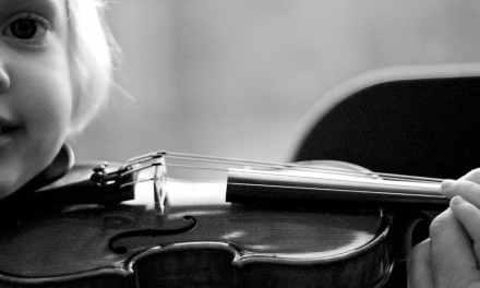 Comprar un violín 1/2 para principiantes