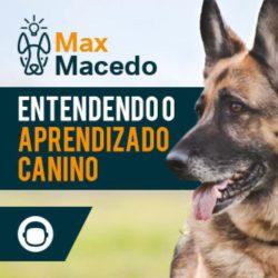 Entendendo o Aprendizado Canino max macedo