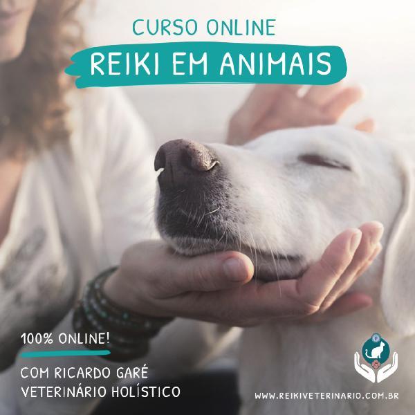 Curso online Reiki em Animais