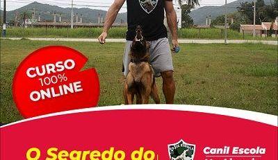 O SEGREDO DO ADESTRAMENTO CANINO