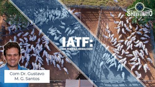 Curos IATF: Do zero ao Resultado Como aumentar a EFICIÊNCIA REPRODUTIVA em bovinos
