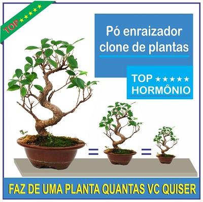 CLONE PLANTAS HORMONIO VEGETAL PÓ ENRAIZADOR BOLSAI ORQUIDEAS RAIZ
