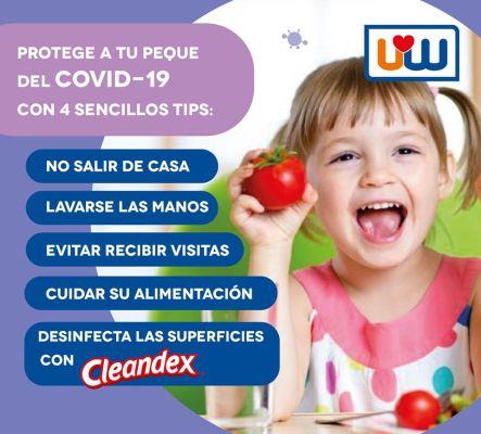 """cleandex <h1 class=""""item-title__primary """">Bolsa Cleandex Limón Antibacterial, 1 caja</h1> ATRIBUTOS Toallas Húmedas Cleandex Limón para superficies  + Elimina el 99.9% de los gérmenes más comunes. + Limpian, desinfectan, desodorizan. + Extra Grandes. + Tela resistente y suave. _____________________________________  Consume lo hecho en México.  <strong>PRECIO ESPECIAL A MAYORISTAS</strong> <a href=""""mailto:mayoreo@comprastodo.com""""><strong>mayoreo@comprastodo.com</strong></a> Caja con 24 Bolsas Cleandex Limón 40 Toallas Antibacterial"""