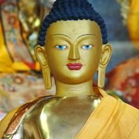 Attachement et Amour dans le Bouddhisme