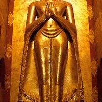 Les Bouddhistes et la Protection de l'Environnement
