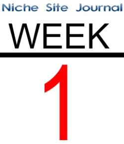 Niche Site Journal 2.0 – Week 1