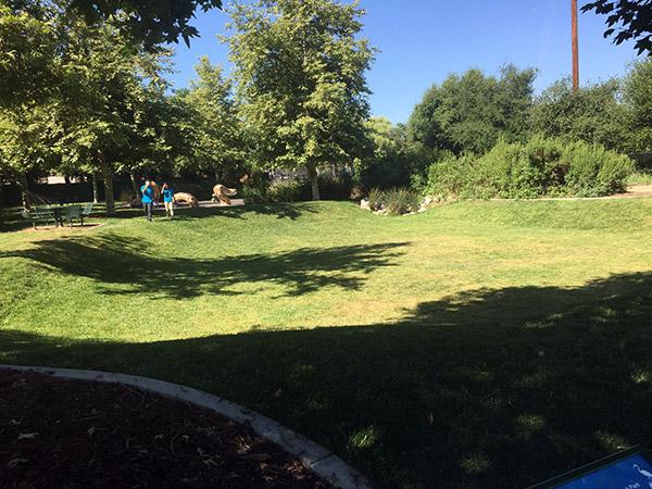 Marsh Park