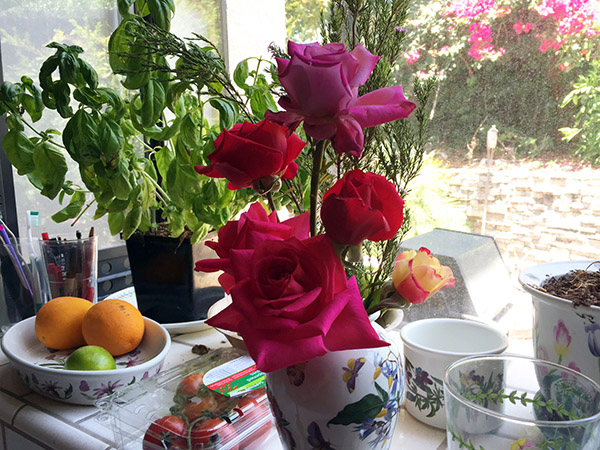 Roses in botanical garden vase in a kitchen garden window