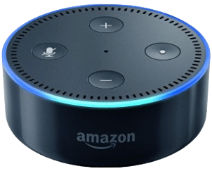 Amazon's Alexa mishears little boy - comes up with......Porn