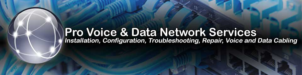Illinois Onsite Computer Repair, Network, Voice and Data Cabling Services
