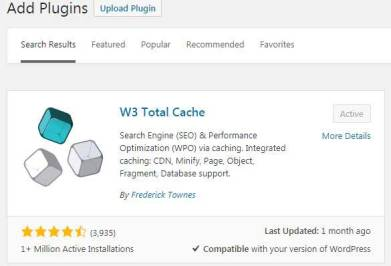 w3 total cache setting
