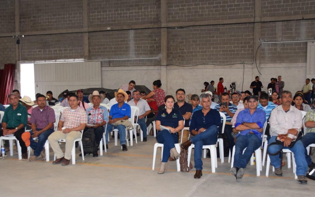 COMSA firma convenio de comercialización con organizaciones de productores de café