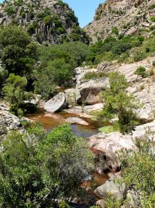 Un torrente nel Parco dei Sette Fratelli