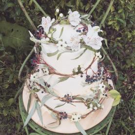 poftele-femeilor-tort