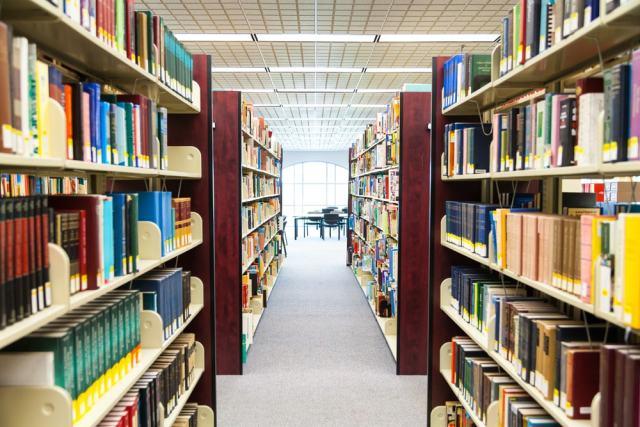 Un buen indicador social debería ser el número de bibliotecas que hay en cada país