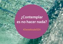 ¿Contemplar es no hacer nada? | Destellos del SEA