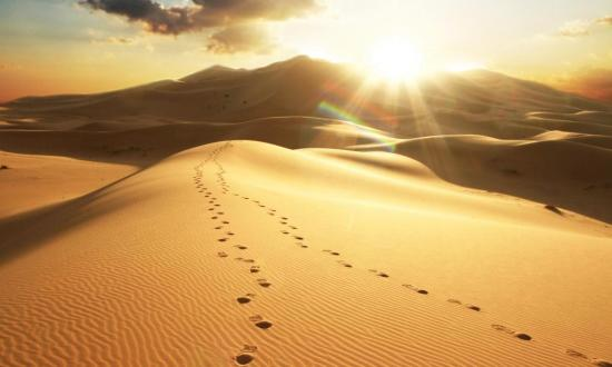 Desierto Vespertino