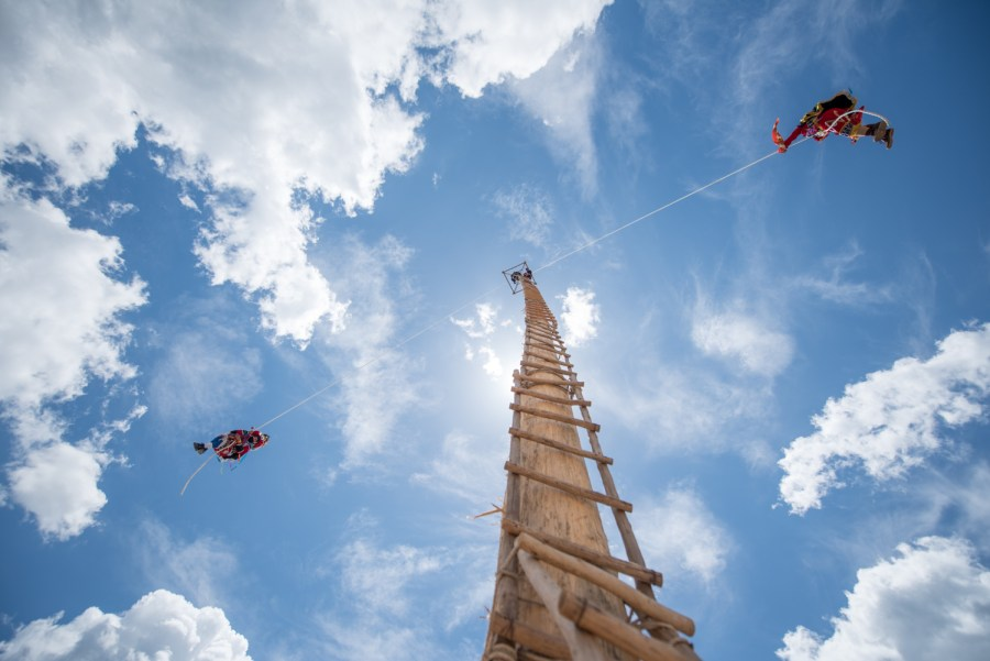 Angel dancers descend from the 40m tall tree. Photo: Santiago Billy/Comvite