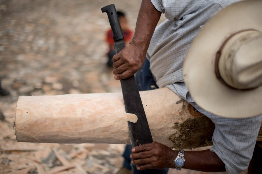 A man cuts the end of the tree in order to make the rotation device fit. Photo: Santiago Billy/Comvite